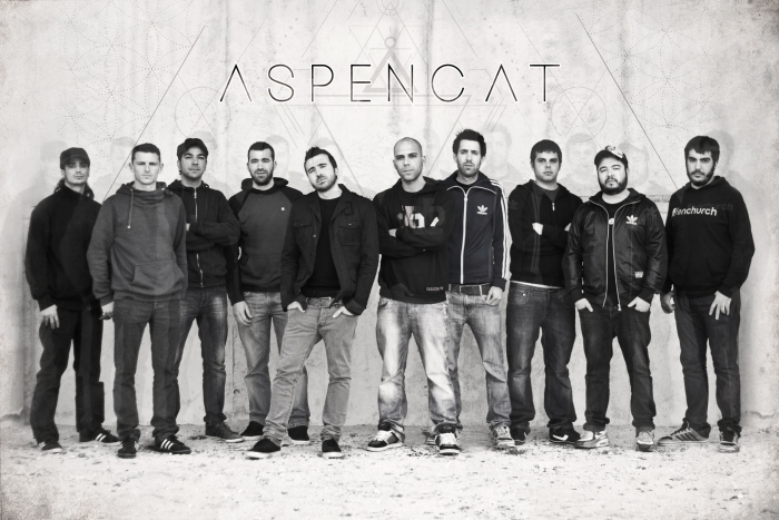 aspencat_1